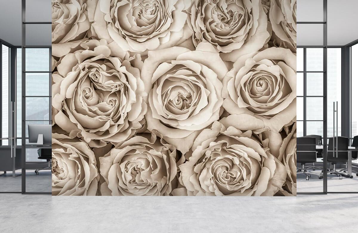 Fond d'écran de roses 6