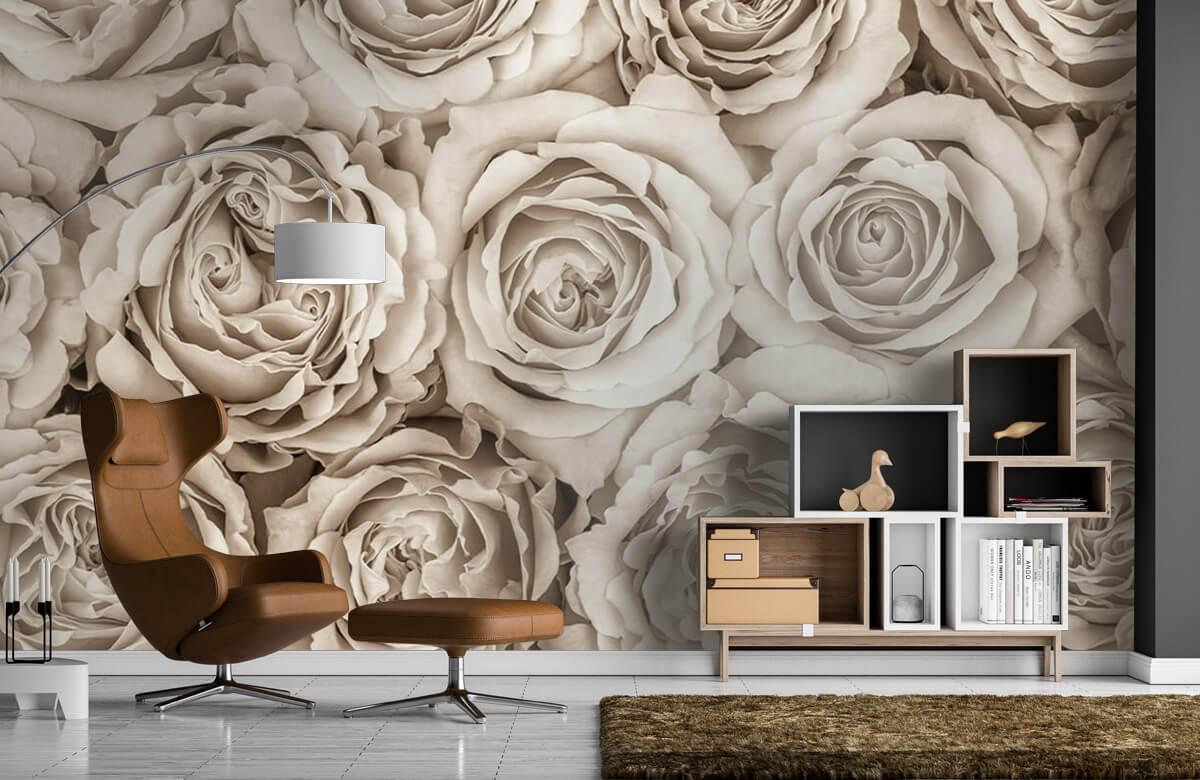 Fond d'écran de roses 7