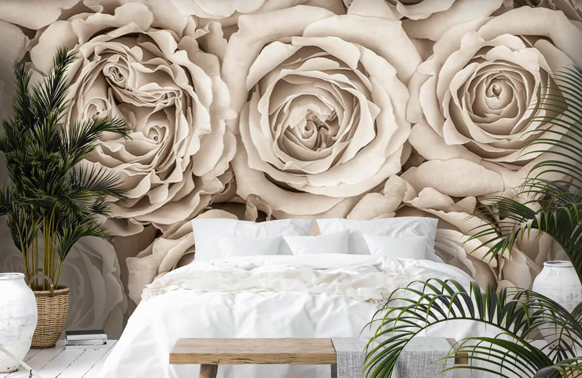 Fond d'écran de roses 8
