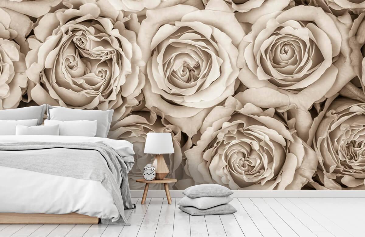 Fond d'écran de roses 11