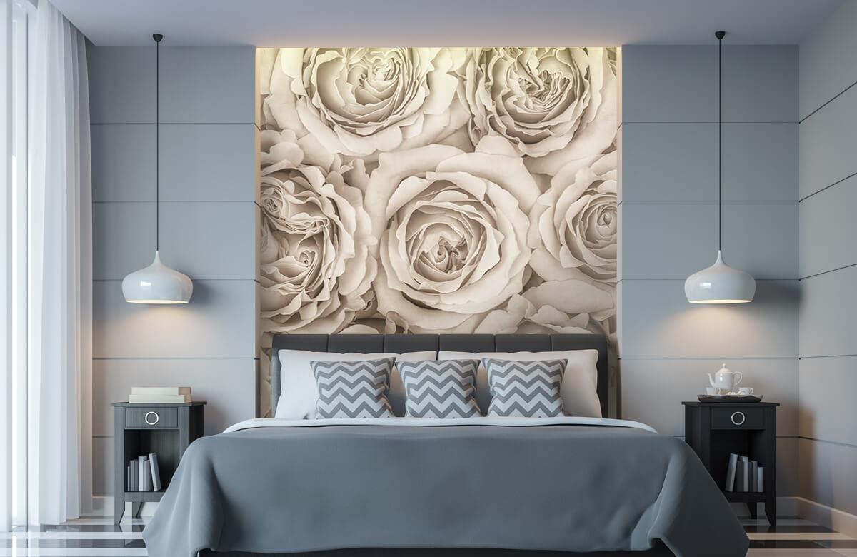 Fond d'écran de roses 1