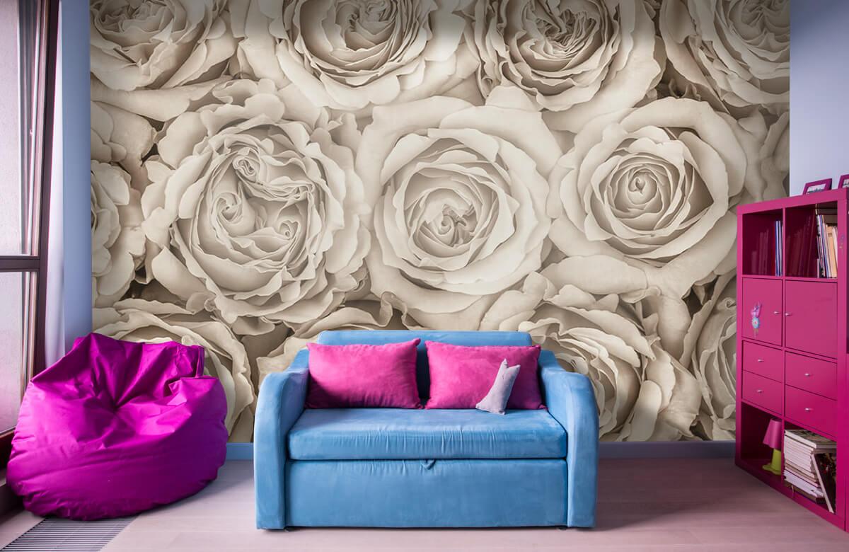 Fond d'écran de roses 2