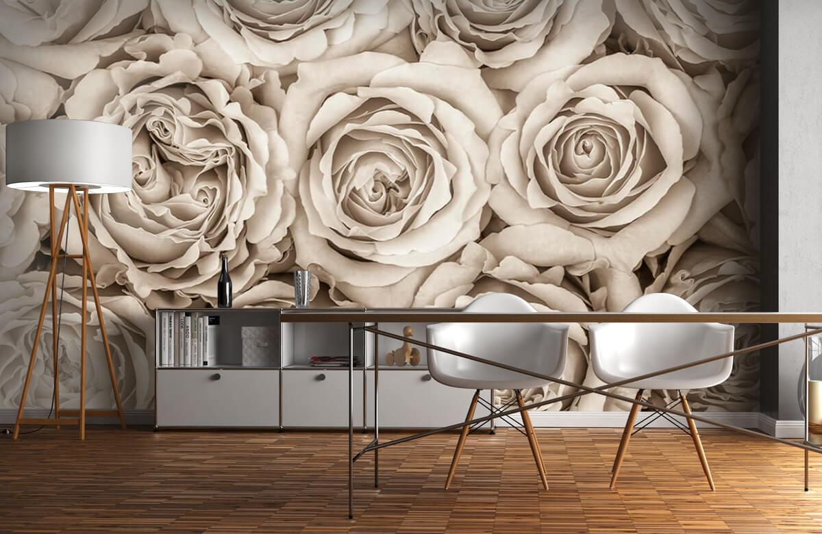 Fond d'écran de roses 4