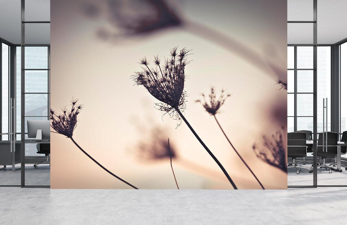 Reflet de plantes 5