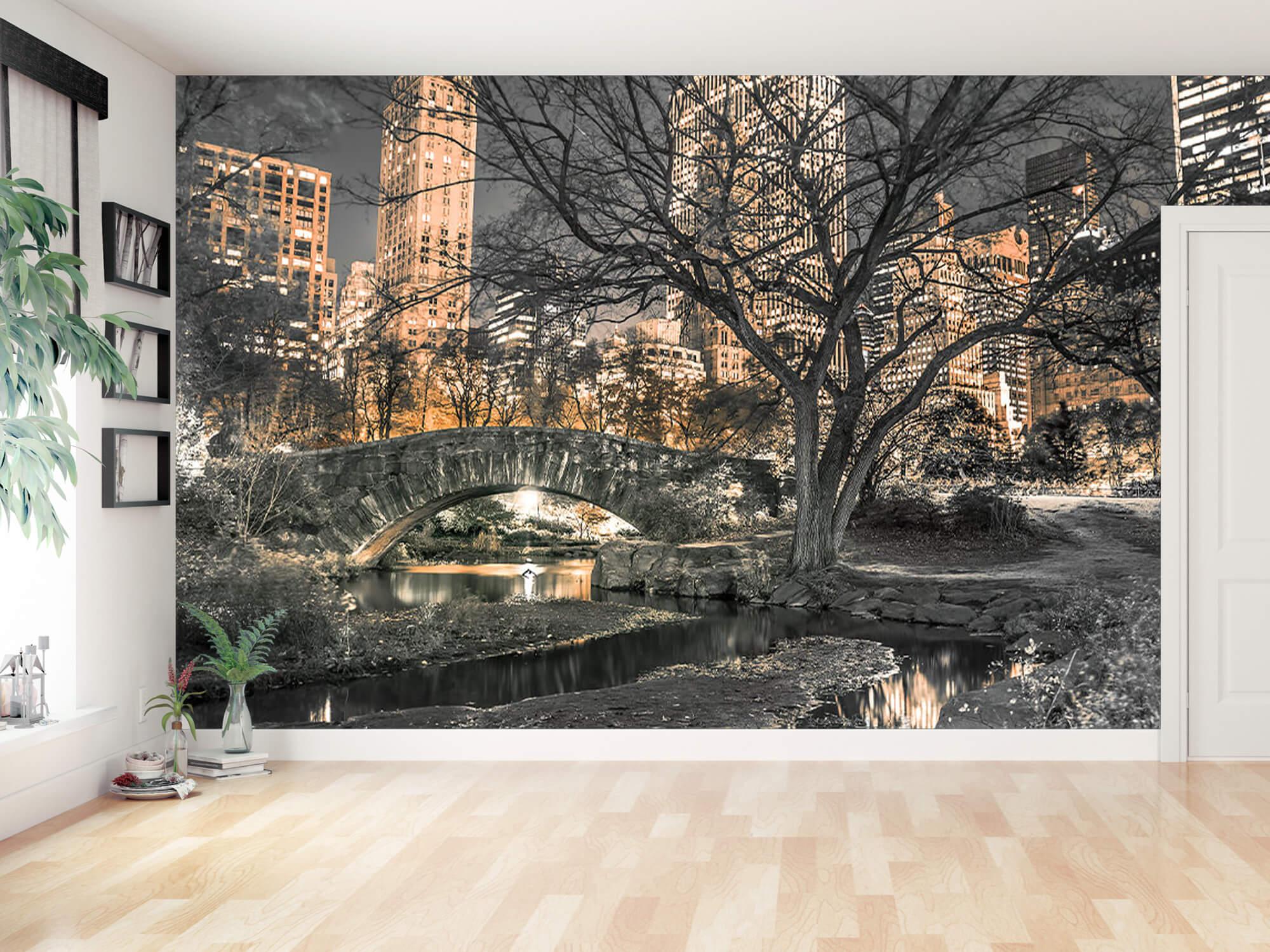 Central park en soirée 6
