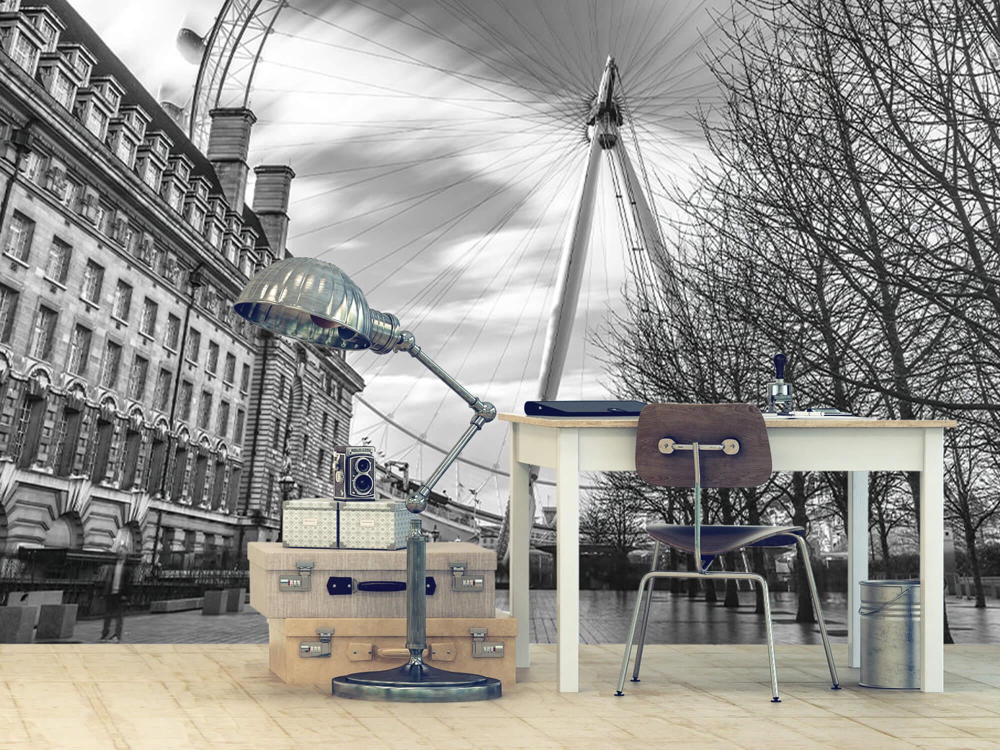 Grande roue de Londres 10