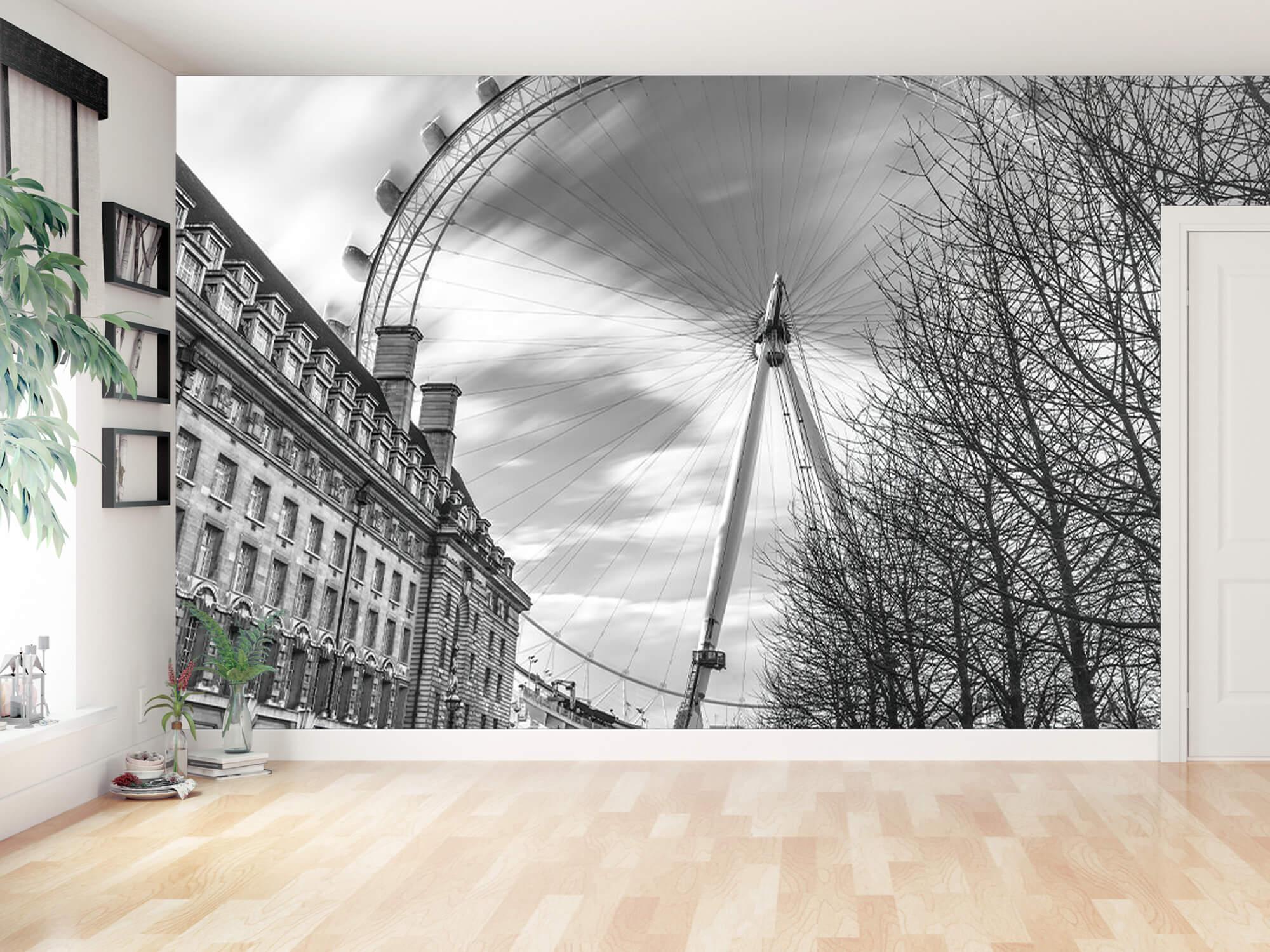 Grande roue de Londres 11