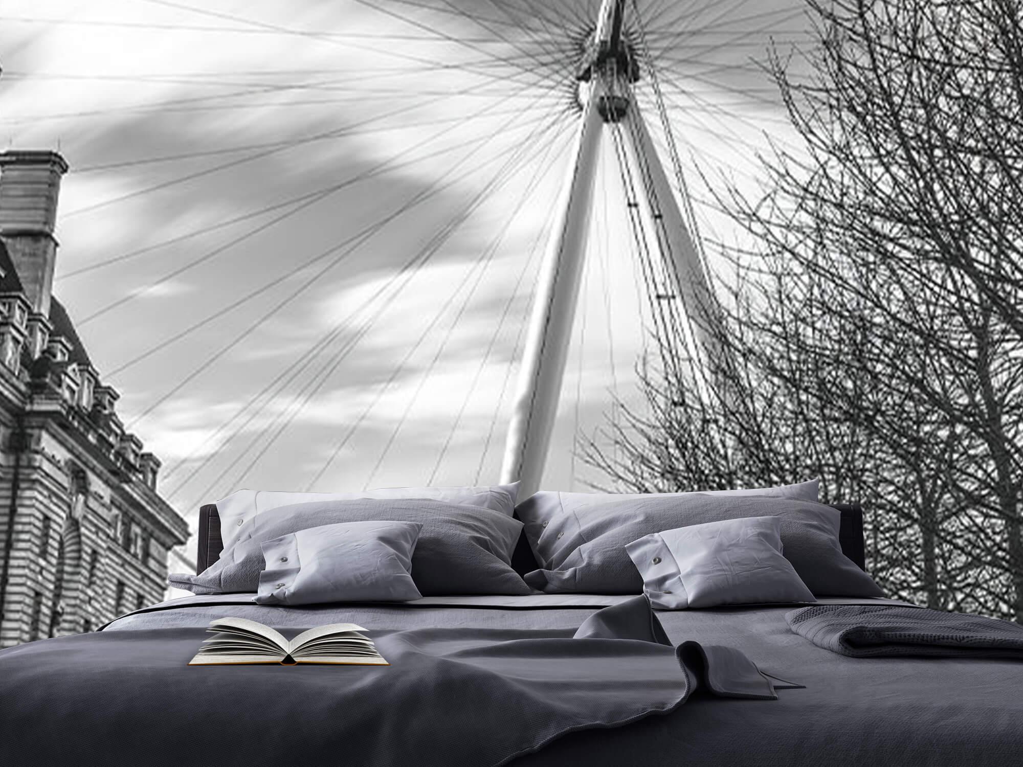 Grande roue de Londres 18
