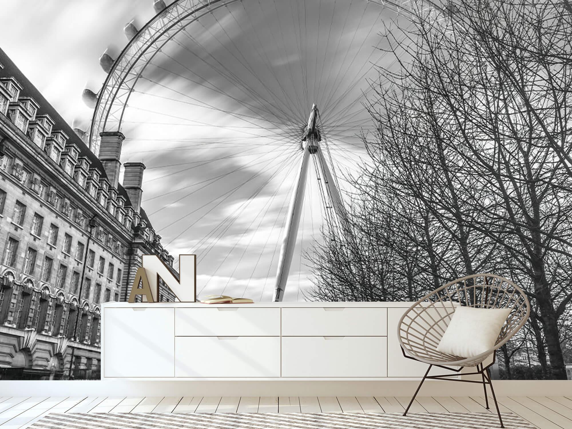 Grande roue de Londres 19