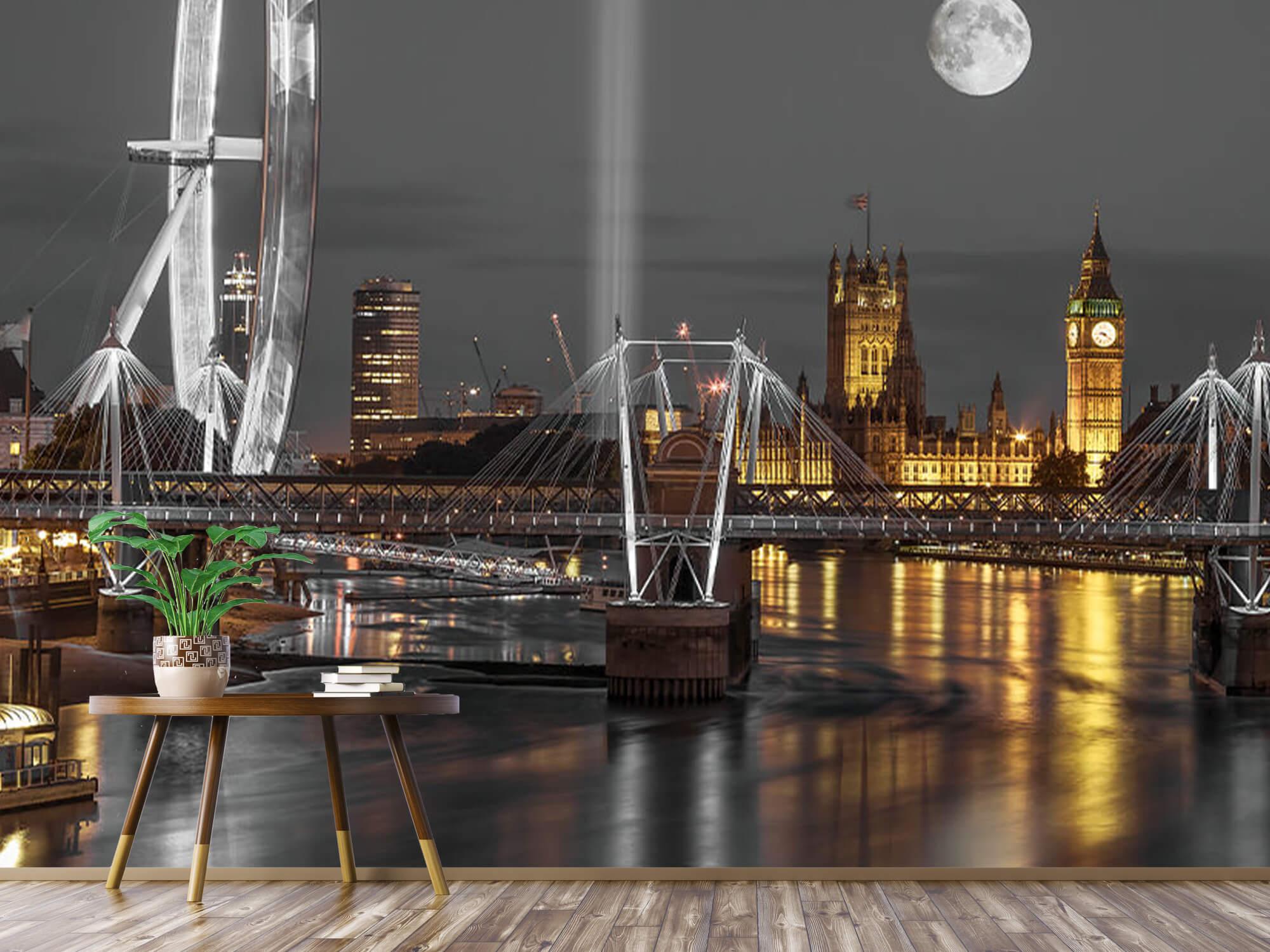 Westminster en soirée 5