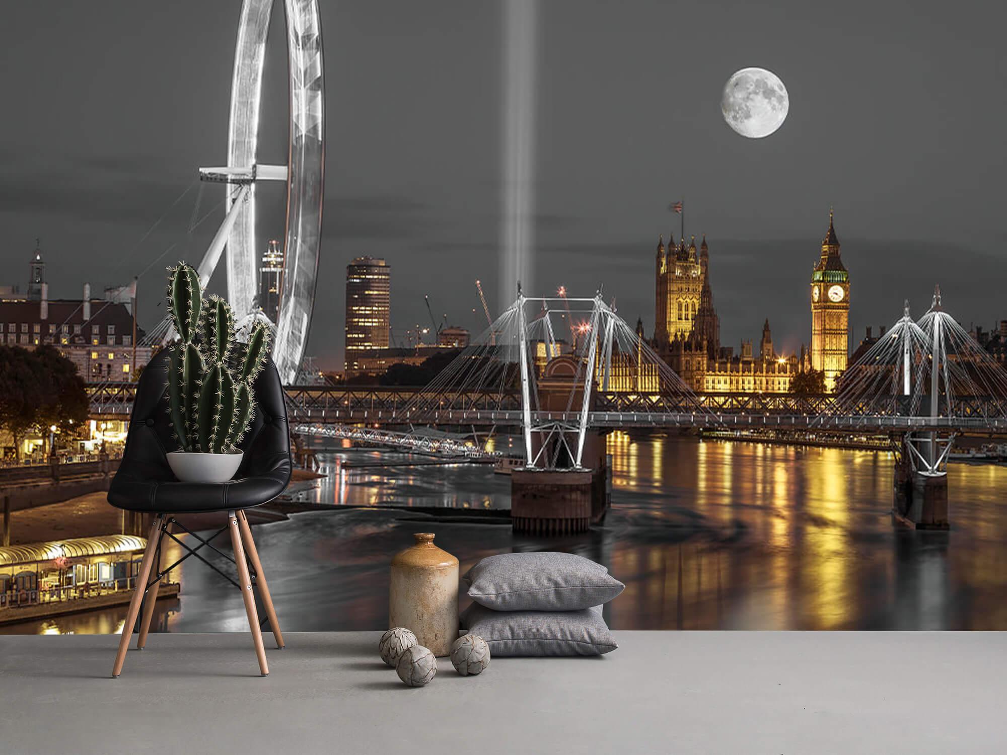 Westminster en soirée 17